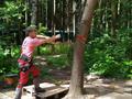 Удаление дерева с вывешиванием