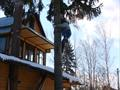 Удаление елки в Снегирях